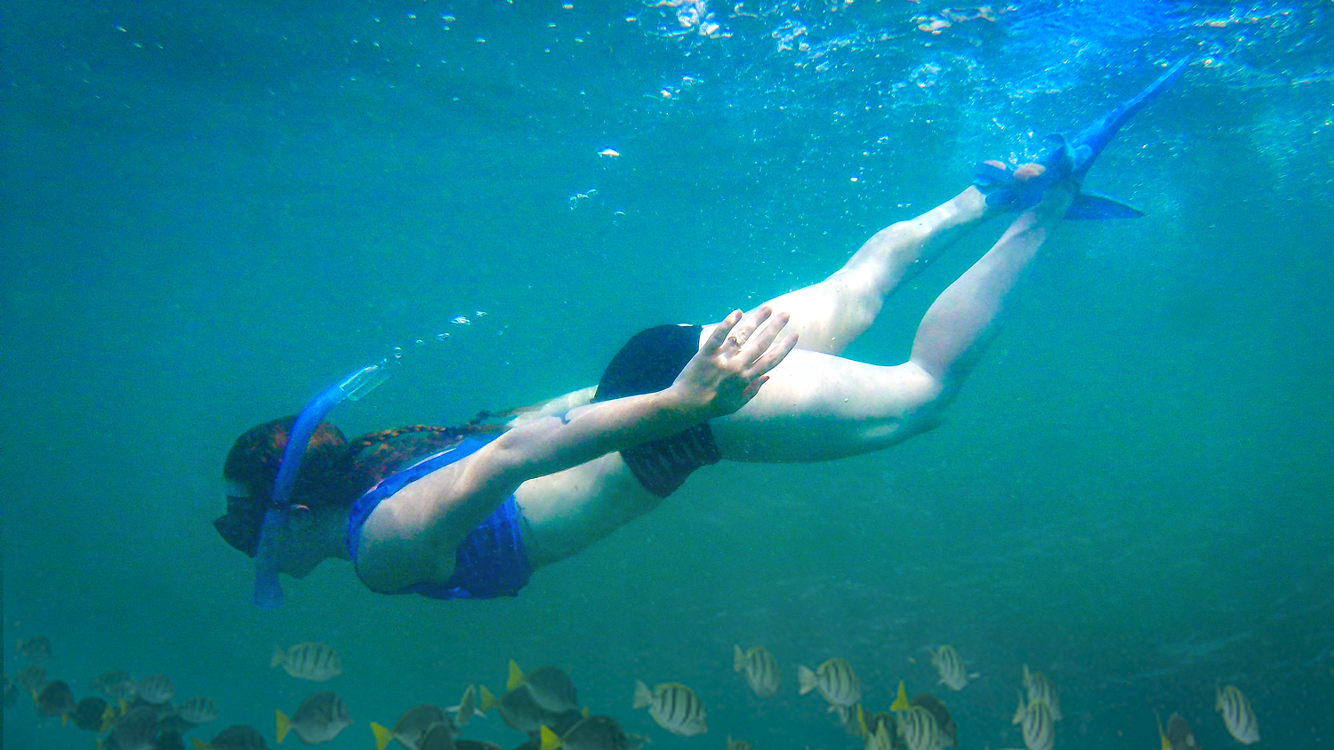 Snorkeling Adventure in Costa Rica! - Travel Vlog